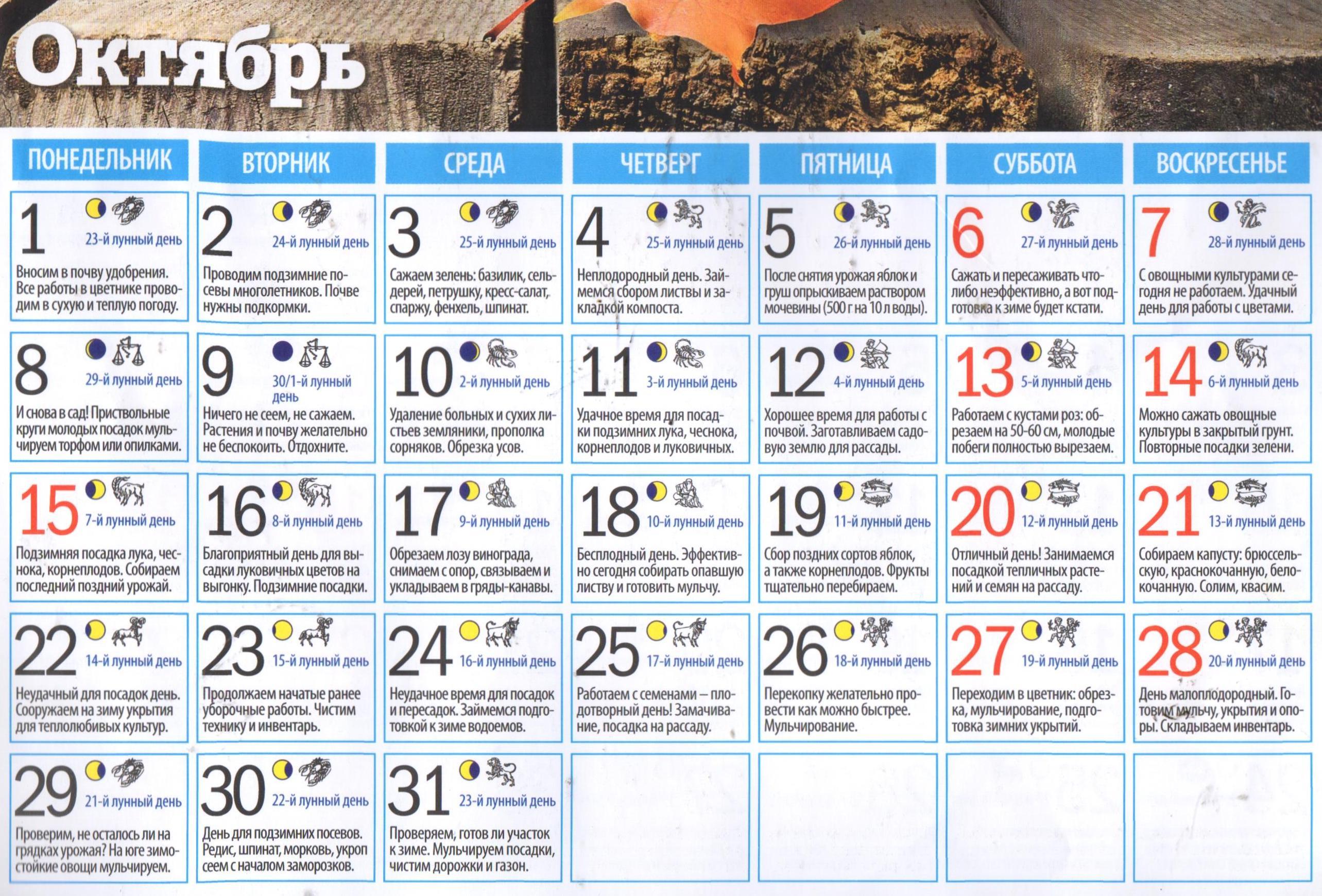 мчс лунный календарь на октябрь фото процесс довольно распространен