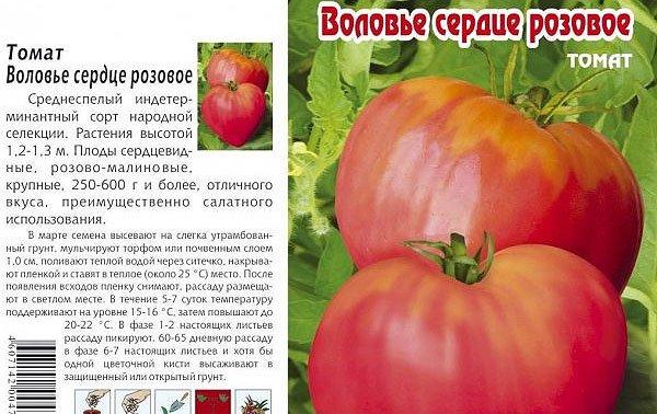 Описание сорта томата Воловье сердце