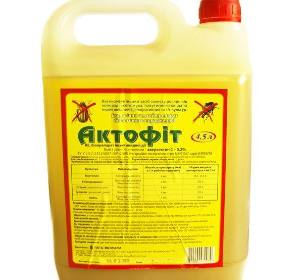 Препарат используют для уничтожения белокрылки тепличной