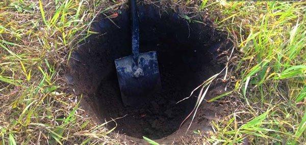 Для подготовки посадочной ямы необходимо подрыхлить землю