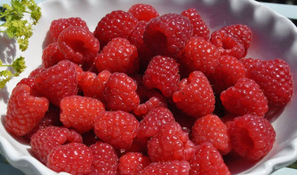 Подготовка ягод малины для варенья