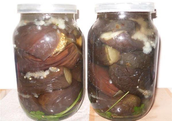 Соленые баклажаны на зиму
