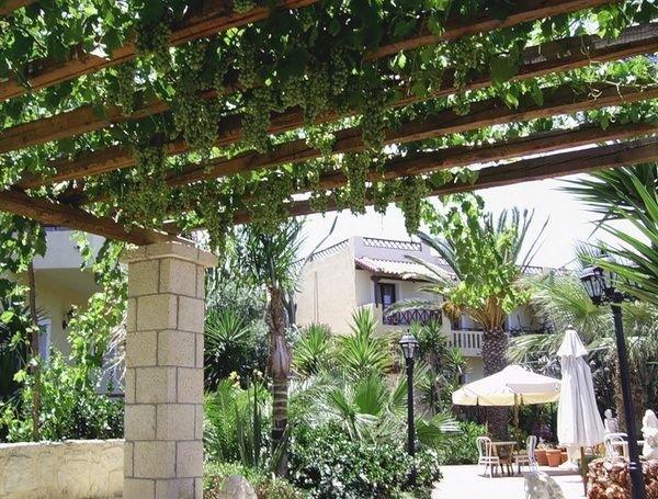 Беседку можно украсить лозой винограда