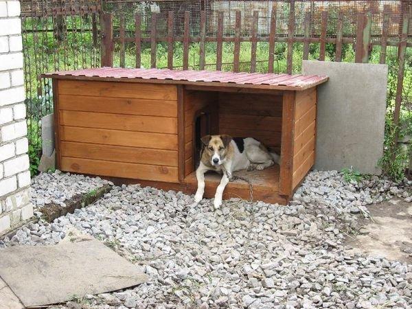 Зимой будка собаки должна быть теплой