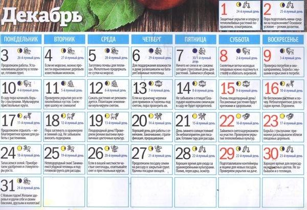 Лунный календарь садовода на декабрь 2018 года