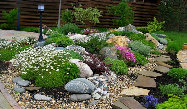 Альпинарий – это гора из камней, украшенная цветами