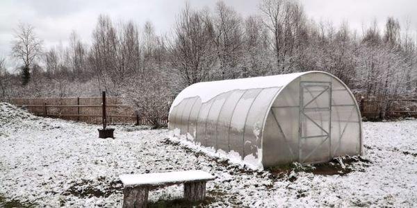 Опытные дачники советуют в январе составить подробный план участка
