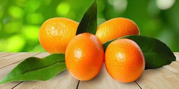 Самый большой фрукт, самые огромные фрукты мира | 300x600